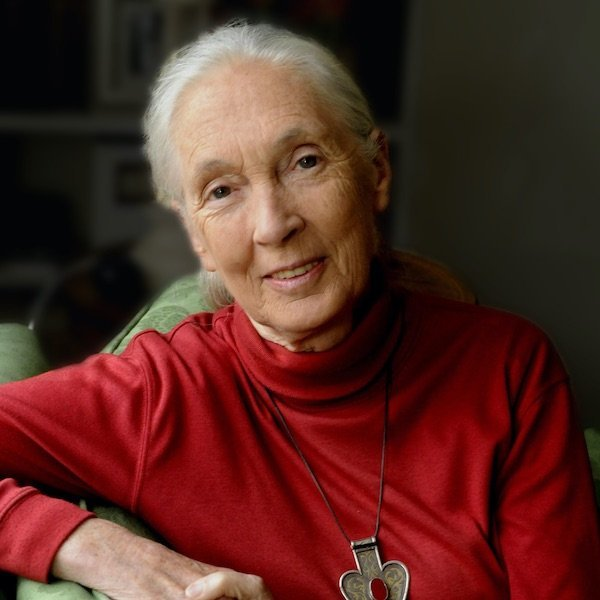 Sustainability Speaker Jane Goodall